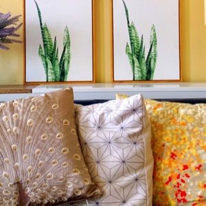 Wall Art - Wall Fashion Succulent Canvas Print
